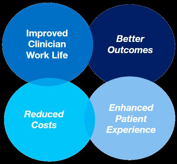 lincor-healthcare-diagram